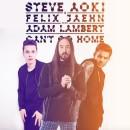 Le nouveau single de Steve Aoki en featuring avec Felix Jaehn et Adam Lambert !